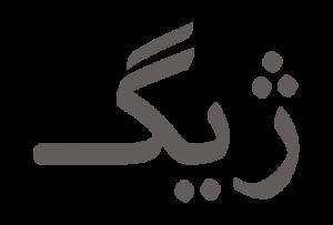 شرکت توسعه تجارت الکترونیک ژیگ